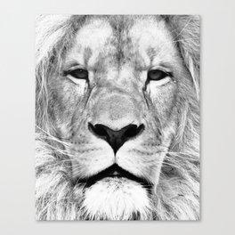 Lion, Animal, Scandinavian, Minimal, Trendy decor, Interior, Wall art Art Canvas Print