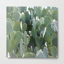 Prickly Jungle Metal Print