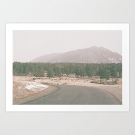 Treebelt Art Print
