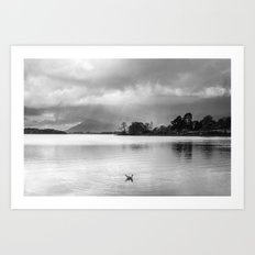 Evening rainclouds, bird and distant rain over Skiddaw and Derwent Water. Lake District, UK. Art Print