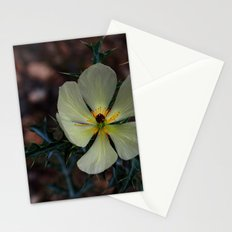 Hiding in my garden Stationery Cards