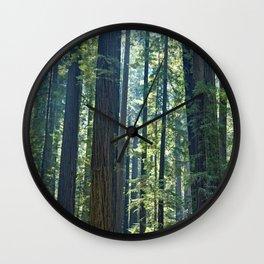 California Redwoods Wall Clock