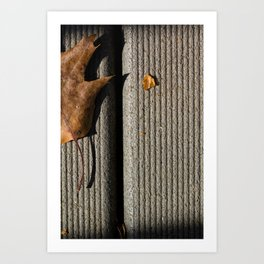 Fall Begins Art Print