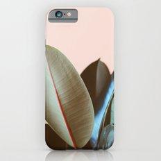 Ficus Elastica #1 iPhone 6 Slim Case