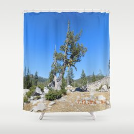 road trip, non typical tree, forked tree, back growth Shower Curtain