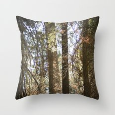 Come Away Throw Pillow