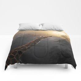 Reaching Comforters