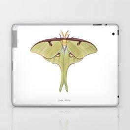 Luna Moth Laptop & iPad Skin