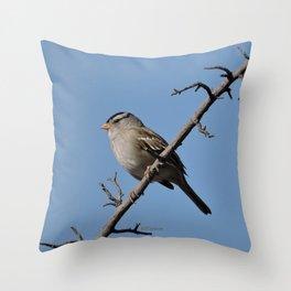 A White-Crowned Sparrow Eyes the Botanic Garden Throw Pillow