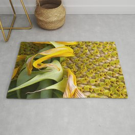 A Flower Of Sunshine Seed Lights Rug