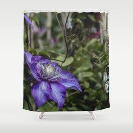 Makro_Clematis_6 Shower Curtain