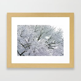 Treetop Snow Framed Art Print
