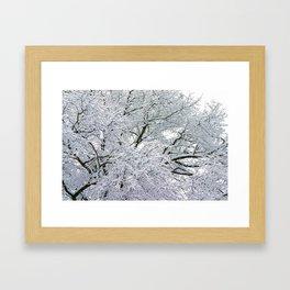 Treetop Snow Framed Art Print