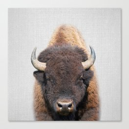 Buffalo - Colorful Canvas Print