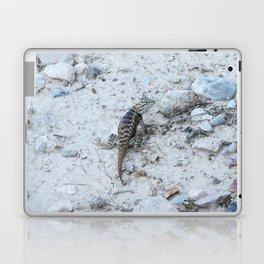 Desert Spiny Lizzard Laptop & iPad Skin