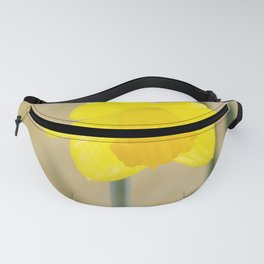Two yellow narcissus flowers Fanny Pack