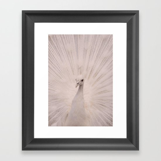 I'm a peacock, you got to let me fly! Framed Art Print