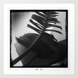 palm leaf** Art Print