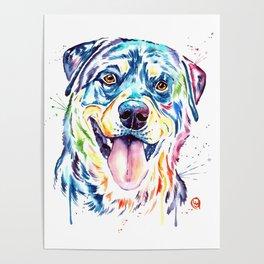 Rottweiler Pet Portrait Colourful Watercolor Painting Poster