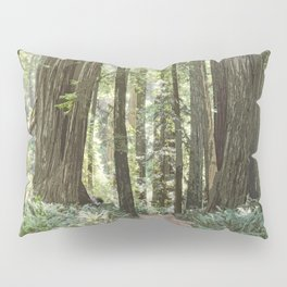 SUNNY REDWOOD TRAIL IN THE STOUT GROVE Pillow Sham