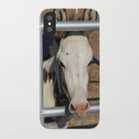 donkey iPhone & iPod Cases featuring Donkey by Heather Boyce