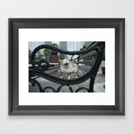 yawn Framed Art Print