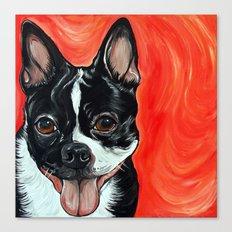 Boston Terrier Dog Art Canvas Print