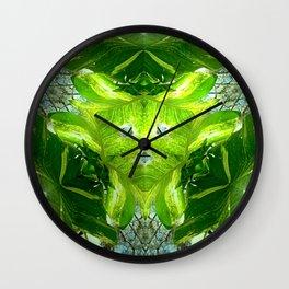 Australian Flora-Spring Vine Wall Clock