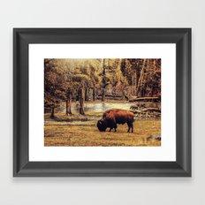 BUFFALO AND RIVER Framed Art Print