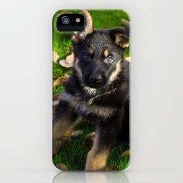 #Little #German #Shepherd #puppy iPhone Case