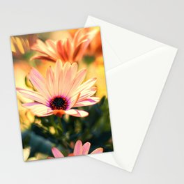 A Piece of Summer Stationery Cards