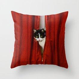 Peek-A-Boo Tuxedo Kitty Throw Pillow