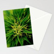 Marijuana Stationery Cards