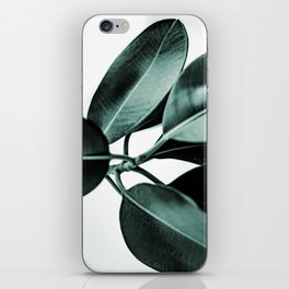 Minimal Rubber Plant iPhone Skin