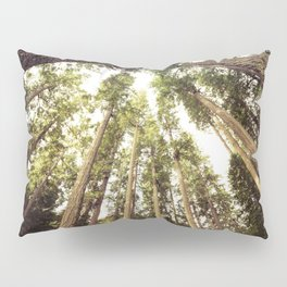 The Canopy Pillow Sham