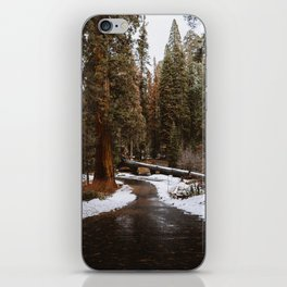 Tunnel Log Road in Sequoia iPhone Skin