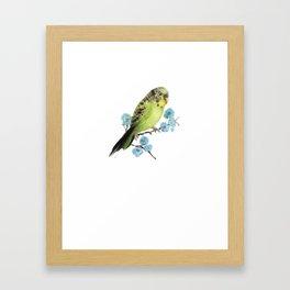 Blue Cuttie Framed Art Print