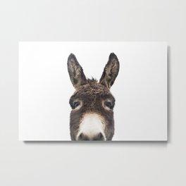 Hey Donkey Metal Print