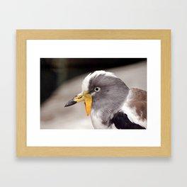Grey Eyes Framed Art Print