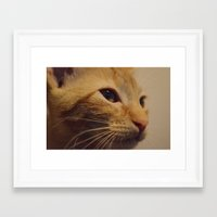 taco Framed Art Prints featuring Taco by Admire Beauty