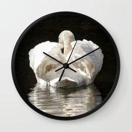 Swans wings wide open Wall Clock