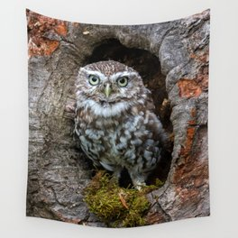 Owl in a tree hole Wall Tapestry