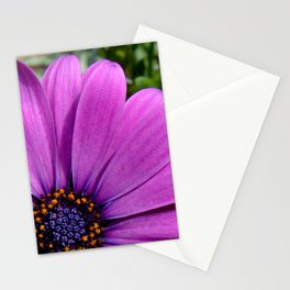Purple Osteospermum Stationery Cards