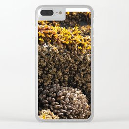 Barnacles on the Beach Clear iPhone Case