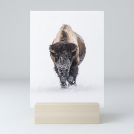 Yellowstone National Park: Lone Bull Bison Mini Art Print