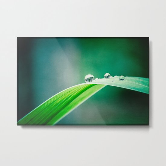 of green and blue Metal Print