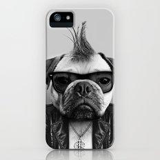 PUG STAR Slim Case iPhone (5, 5s)