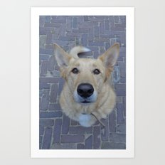Treat? Art Print