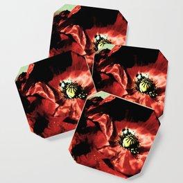 one red poppy Coaster