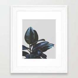 Botanical Art V4 #society6 #decor #lifestyle Framed Art Print